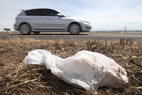 Danville may join other cities in banning the plastic bag.